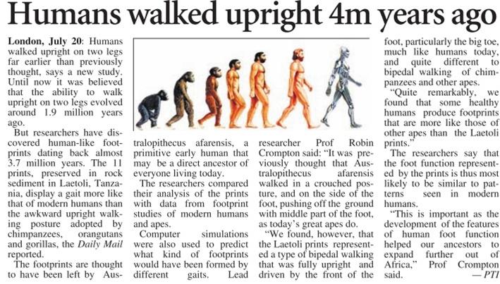 21_07_2011_011_003-humans-walk.jpg
