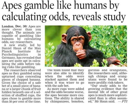31_12_2011_012_025.jpg Apes